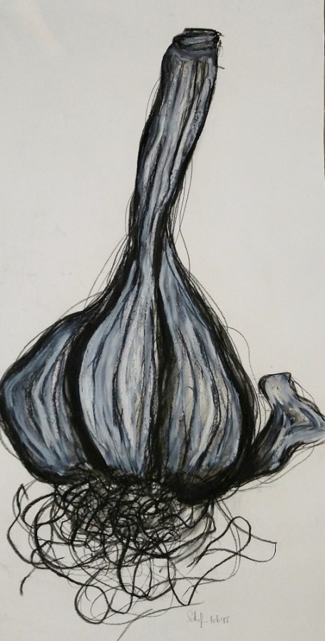 Lori Schafer Giant Garlic 1997 mixed media on paper
