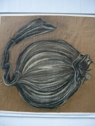 Lori Schafer Giant Onion 1997 mixed media on paper 34 x 35.5 in